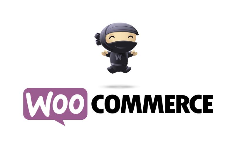 Un Plugin gratuito per WordPress per aggiungere Codice Fiscale e Partita Iva a WooCommerce